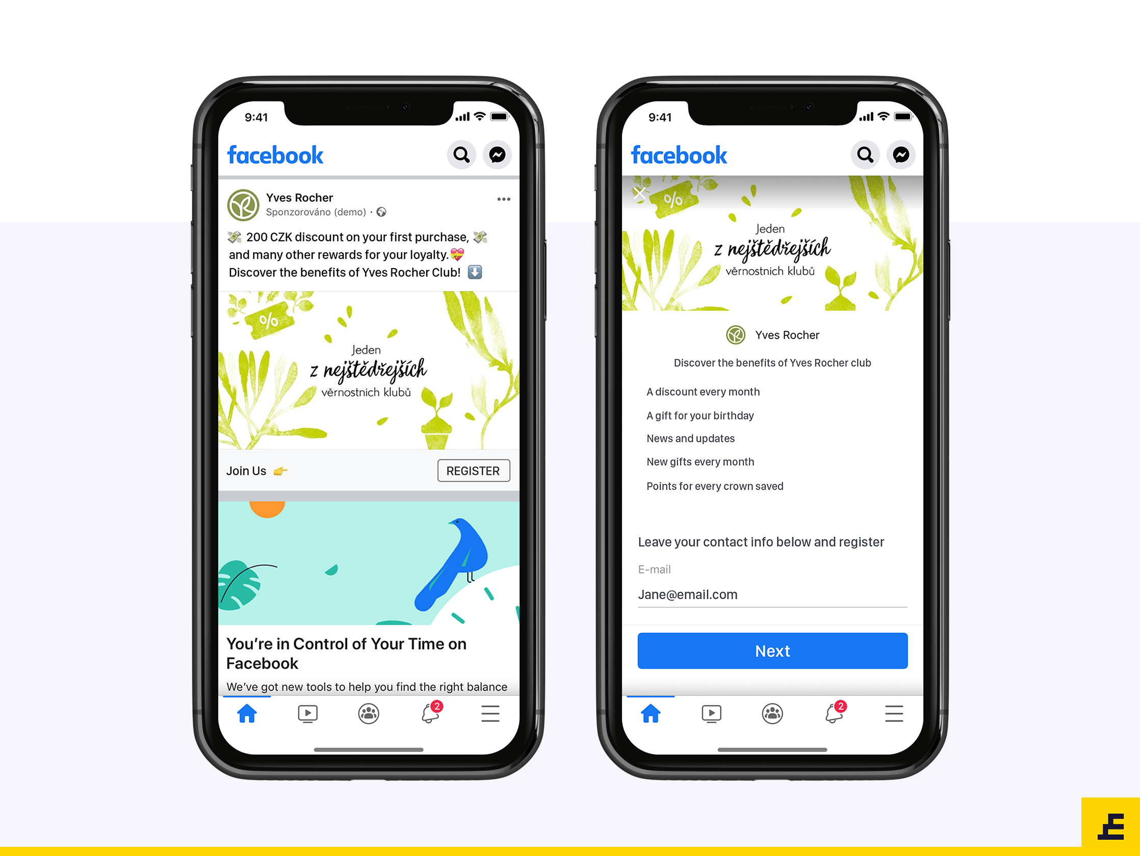 Facebook Lead Ads - Yvers Rocher - Example